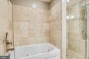 Jetted tub and separate stall shower - 1321 EUCLID ST NW #302, WASHINGTON