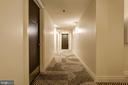 Just renovated hallways - 1312 MASSACHUSETTS AVE NW #109, WASHINGTON