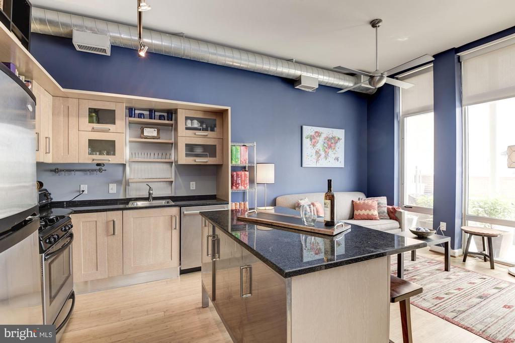 Open floor plan - 1390 V ST NW #209, WASHINGTON
