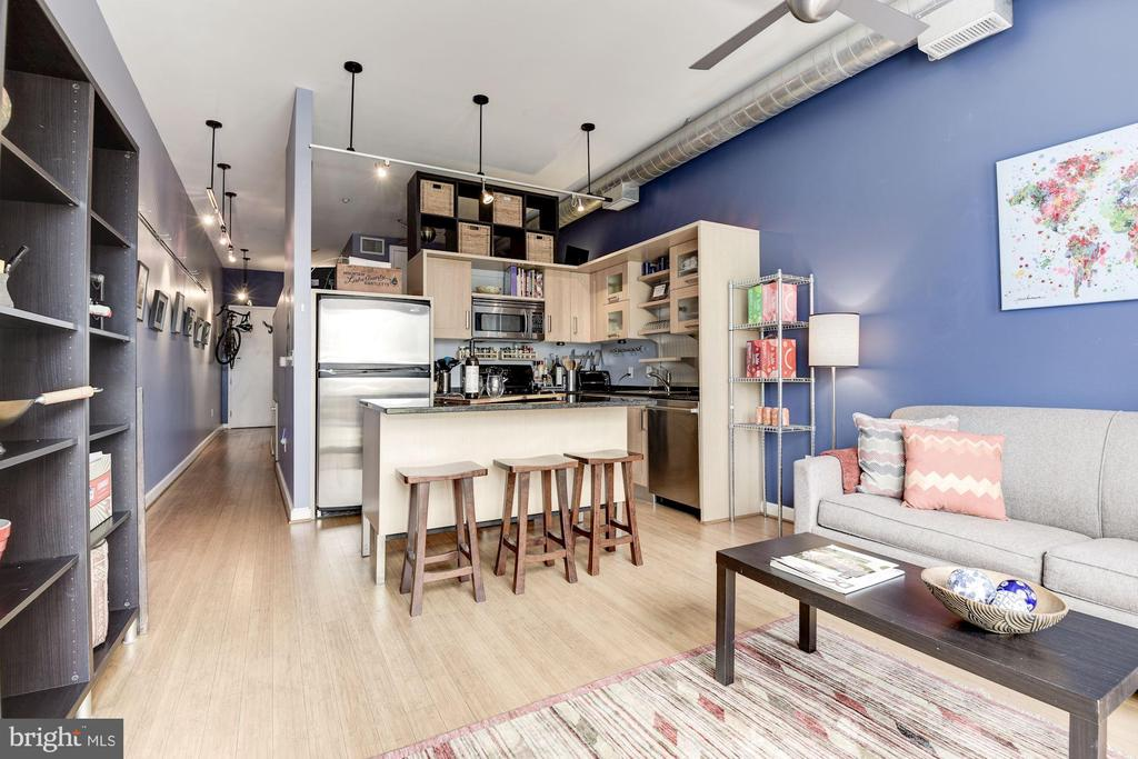 Granite counters, SS appliances, Italian cabinetry - 1390 V ST NW #209, WASHINGTON