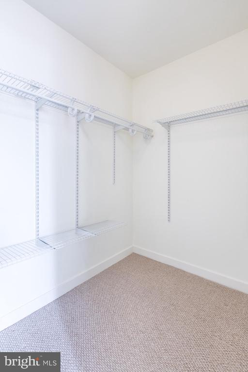 Master closet - 12025 NEW DOMINION PKWY #601, RESTON