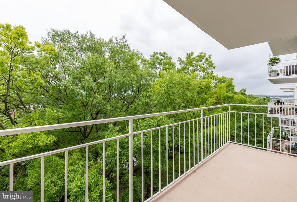 Balcony - 1435 4TH ST SW #B710, WASHINGTON