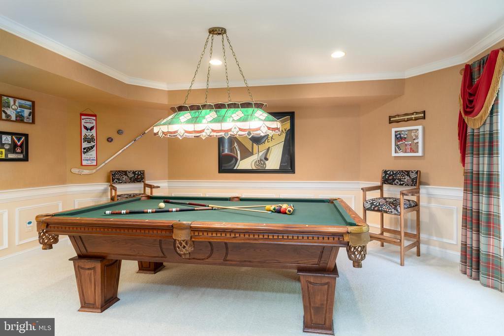 Billiard room with exterior access - 3242 FOXVALE DR, OAKTON