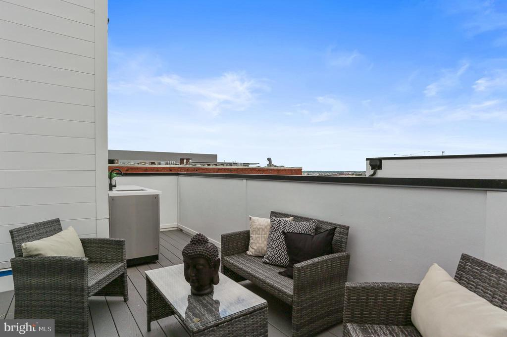 Private Roofdeck - 1434 CHAPIN ST NW #4, WASHINGTON
