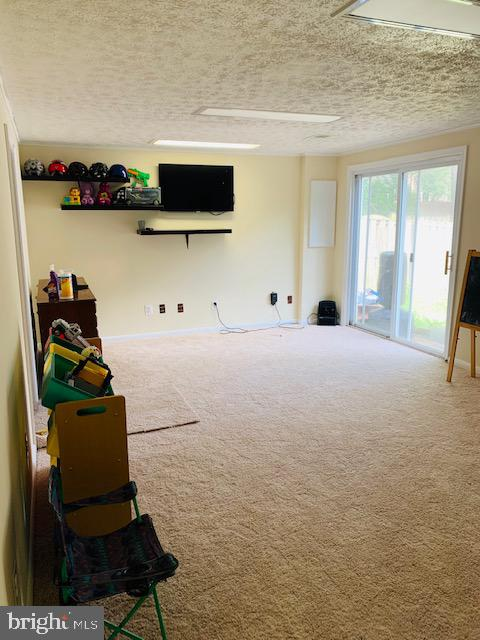 BASEMENT - 9414 FAIRLEIGH CT, BURKE