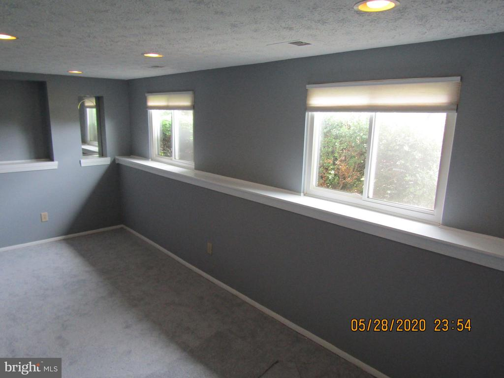 Finished Basement with windows - 13008 ROCK SPRAY CT, HERNDON