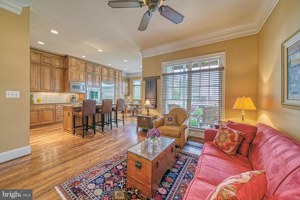 Amazing Heart of the House. Look how open! - 6745 DARRELLS GRANT PL, FALLS CHURCH