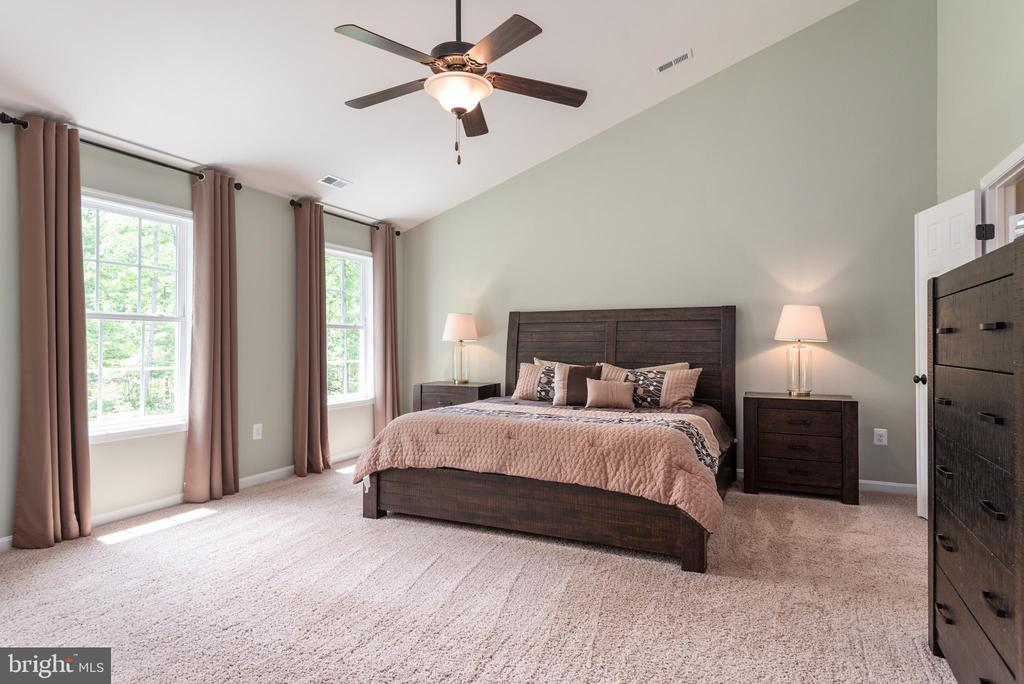 Vaulted master bedroom with tons of natural light - 259 HEFLIN RD, STAFFORD