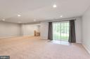 Partially finished basement with walkout access - 259 HEFLIN RD, STAFFORD
