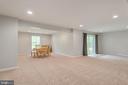 Walk-out basement with natural light - 259 HEFLIN RD, STAFFORD
