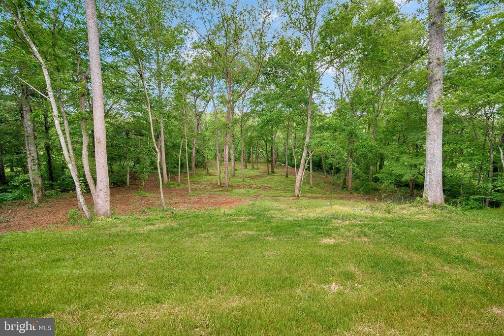 Private treed 3+ acres on the Rapidan River - 34129 ENCHANTED WAY, LOCUST GROVE