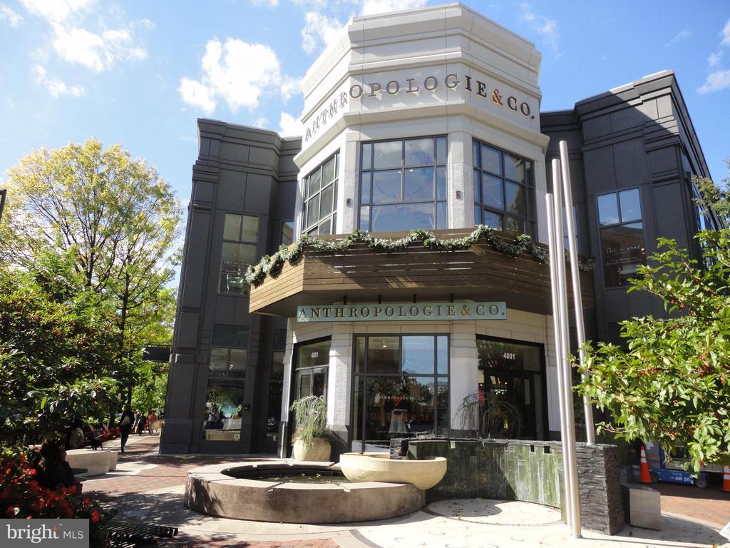 Neighboring Stores - 7111 WOODMONT #701, BETHESDA