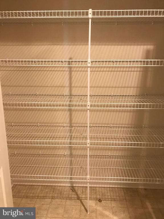 Pantry Closet - 112 FREESIA LN, STAFFORD