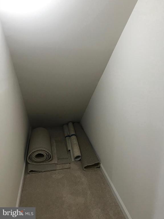 Closet/Storage under Bsmt Stairway - 112 FREESIA LN, STAFFORD