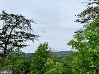 Terreno per Vendita alle ore Star Tannery, Virginia 22654 Stati Uniti