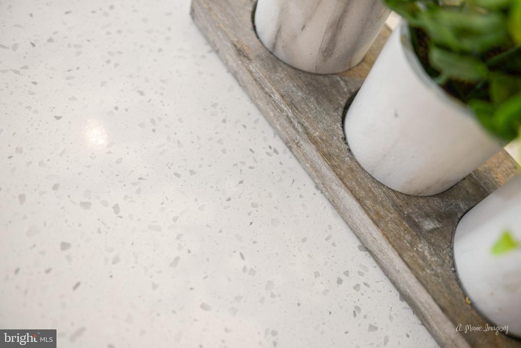 Stunning quartz counters - 3239 STONE BARN DR, FREDERICK