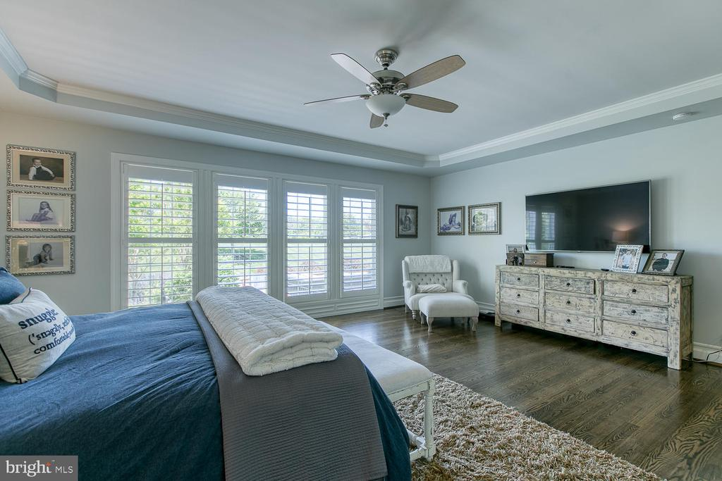 Main-Level Master Suite - 21079 MILL BRANCH DR, LEESBURG