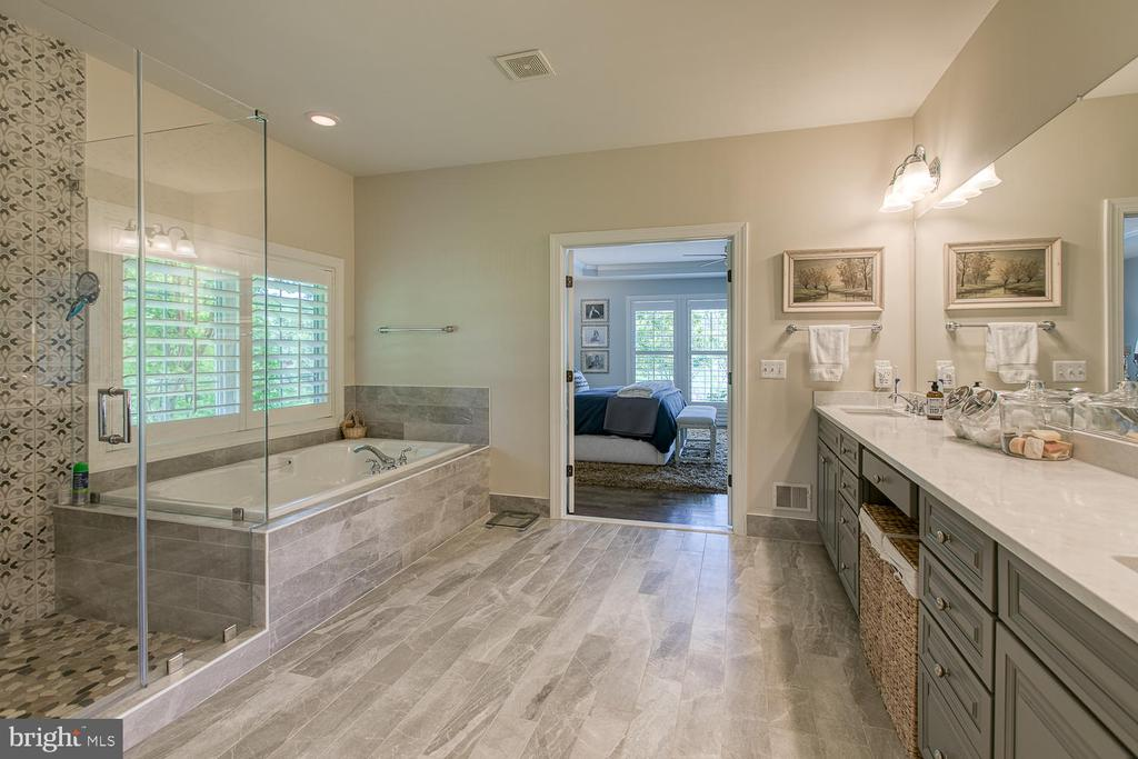 Master Bath - 21079 MILL BRANCH DR, LEESBURG