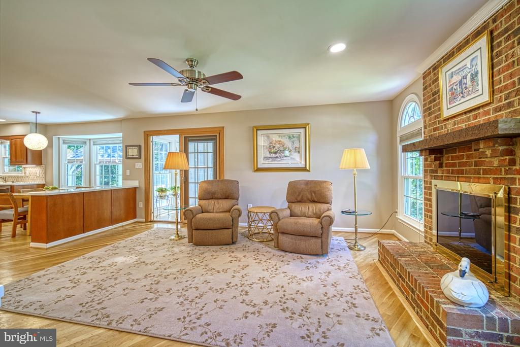 Family Room - 11959 GREY SQUIRREL LN, RESTON