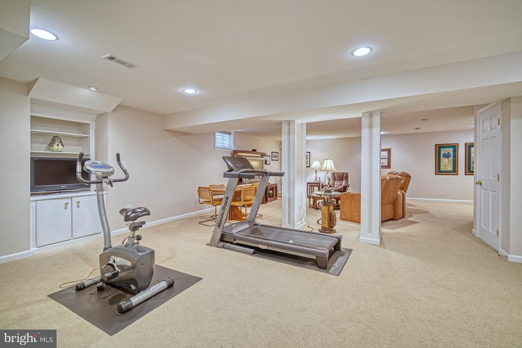 Lower Level Exercise Room - 11959 GREY SQUIRREL LN, RESTON