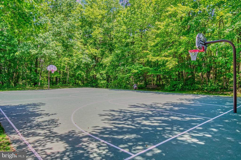 Autumnwood Basketball Courts - 11959 GREY SQUIRREL LN, RESTON
