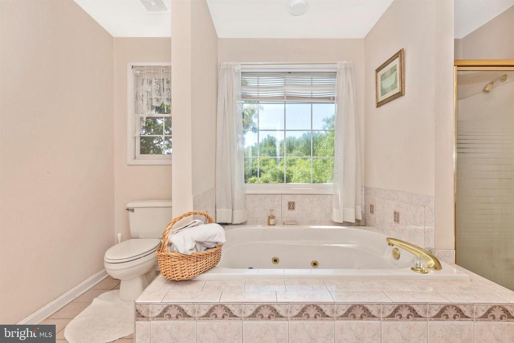 Master Bathroom - 13729 SAMHILL DR, MOUNT AIRY
