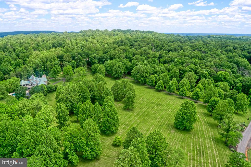 Stunning country estate on 19.3 lush acres - 40310 HURLEY LN, PAEONIAN SPRINGS
