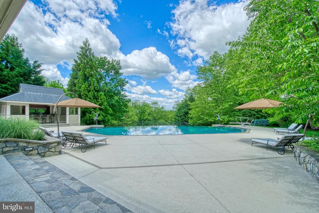 The entertainer's dream of a pool deck - 40310 HURLEY LN, PAEONIAN SPRINGS