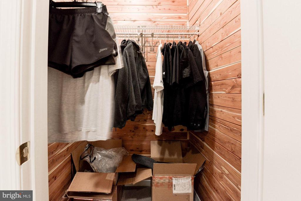 Cedar Closet - 7104 AYERS MEADOW LN, SPRINGFIELD