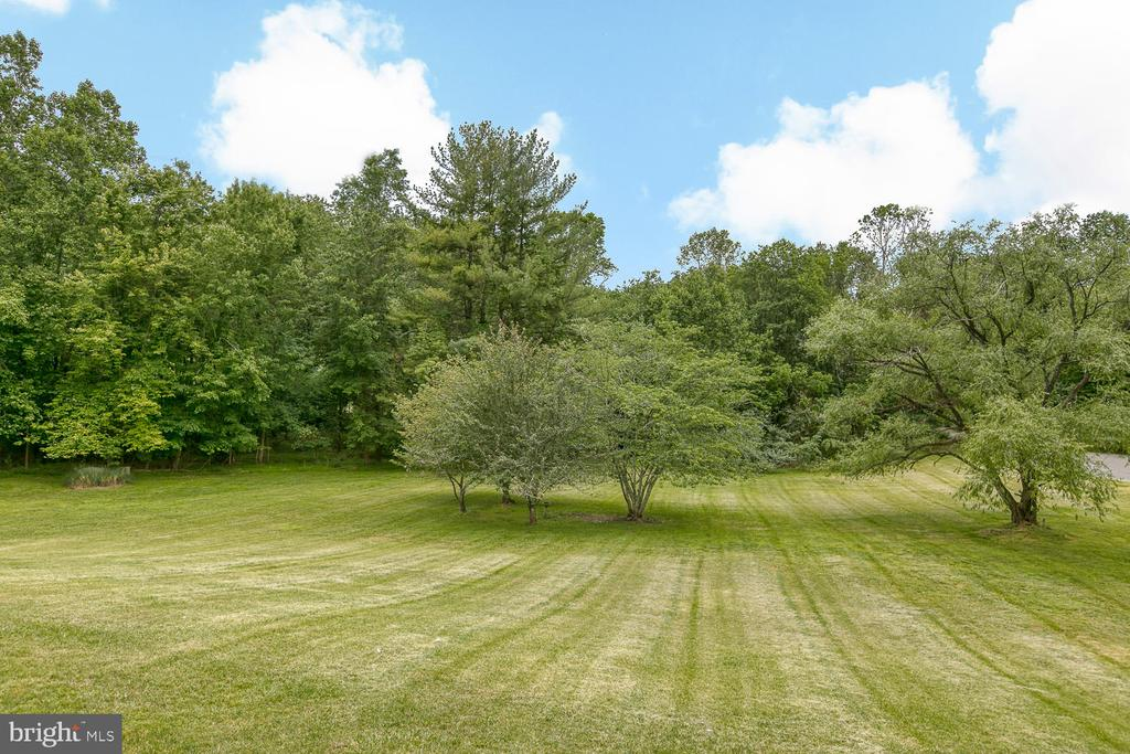 Tons of room to run in the front yard! - 7185 REBEL DR, WARRENTON