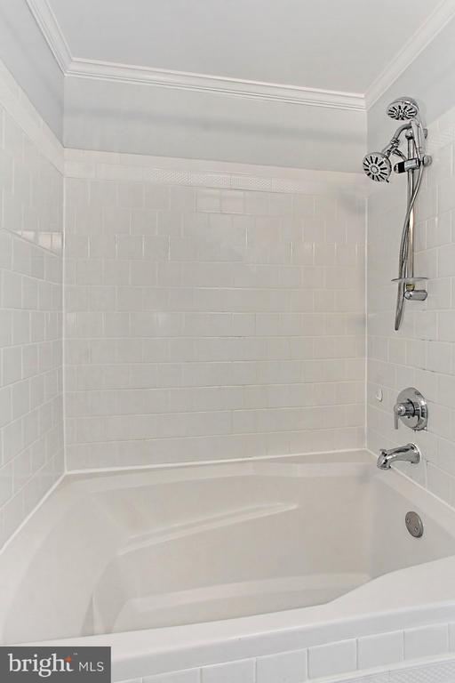 Tub/Shower combo - 420 N COLUMBUS ST, ALEXANDRIA