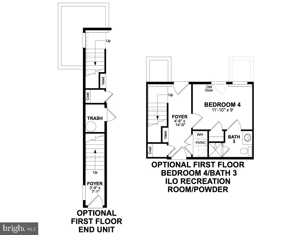 First Floor (Options) - 1234 SOUTH TAYLOR ST, ARLINGTON