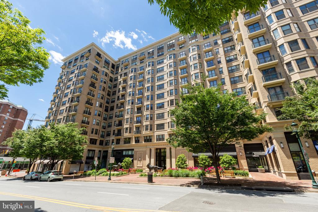 Lovely Lionsgate - 7710 WOODMONT AVE #802, BETHESDA