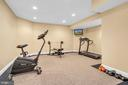 Gym - 19544 ROYAL AUTUMN LN, LEESBURG