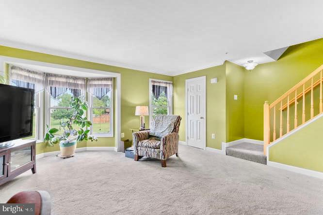 Bright and large living room! - 5307 DUKE CT, FREDERICK