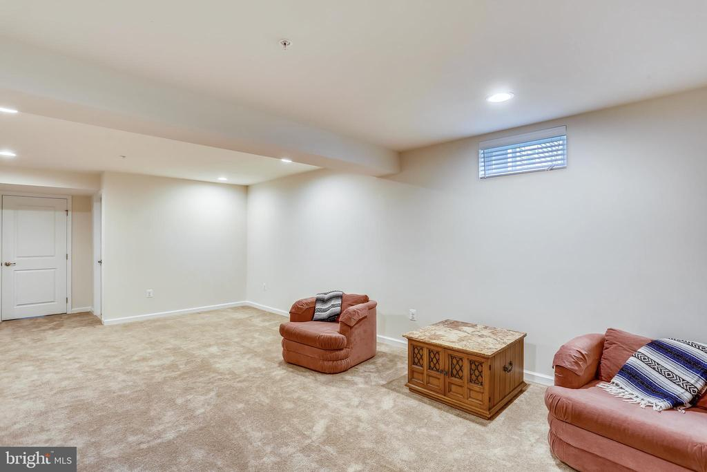 Lower Level & thru the door is a LARGE STORAGE RM - 22362 BRIGHT SKY DR, CLARKSBURG