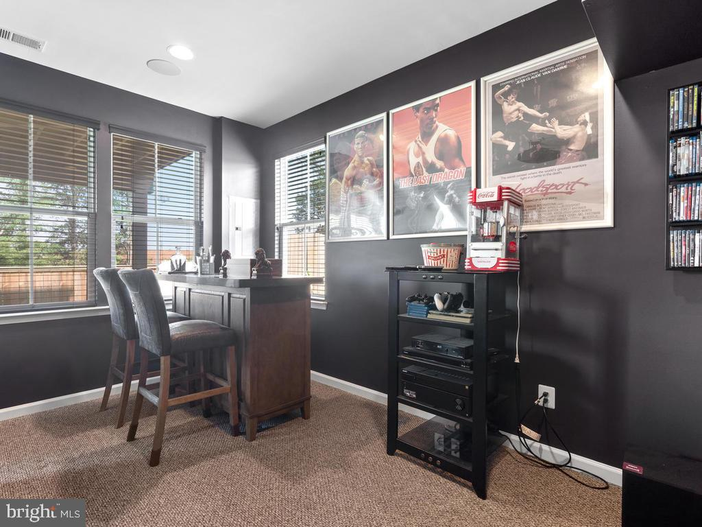 Walk out Lower Level - 23687 TURTLE POINT TER, ASHBURN