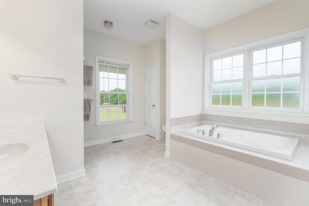 Master bathroom with large soaking tub - 160 WILLOWDALE LN, FREDERICKSBURG