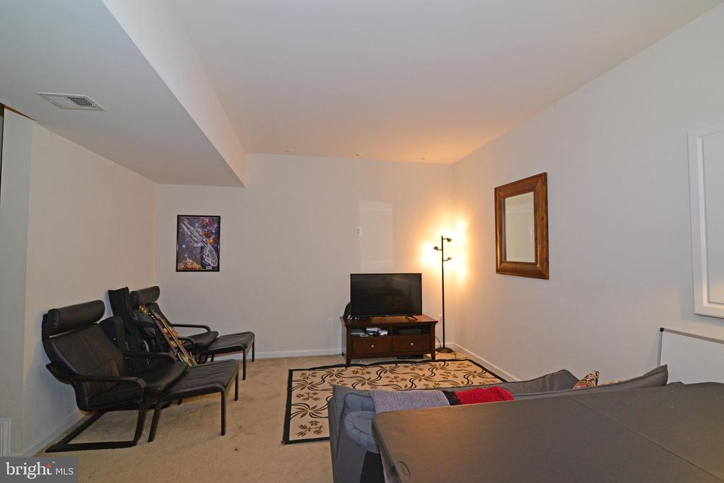 Lower Level Rec Room - 43275 MITCHAM SQ, ASHBURN