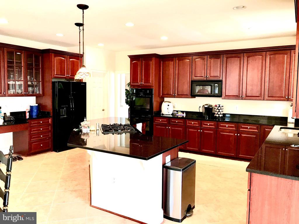 Large Kitchen with tons of storage space - 14414 BROADWINGED DR, GAINESVILLE