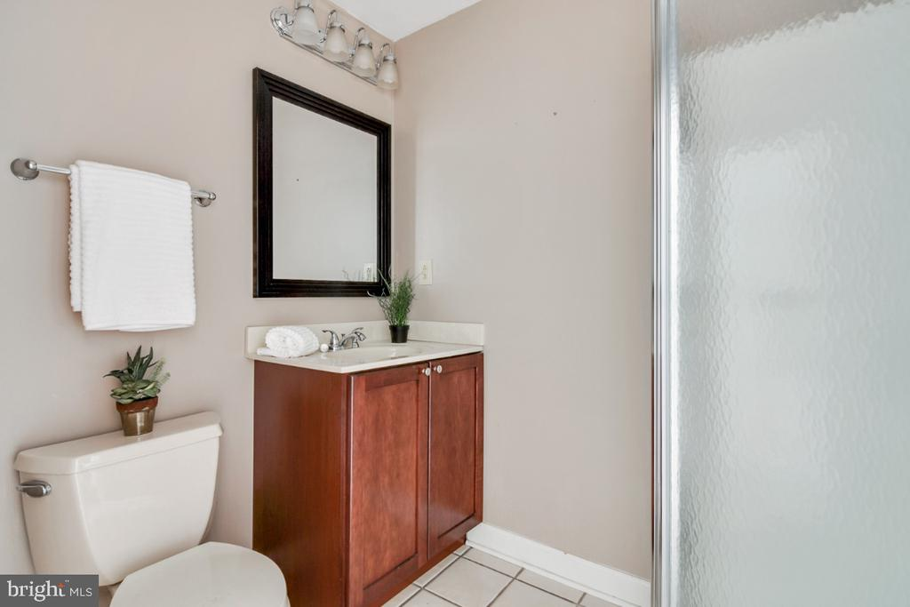 Basement bathroom with shower - 14422 WILLIAM CARR LN, CENTREVILLE