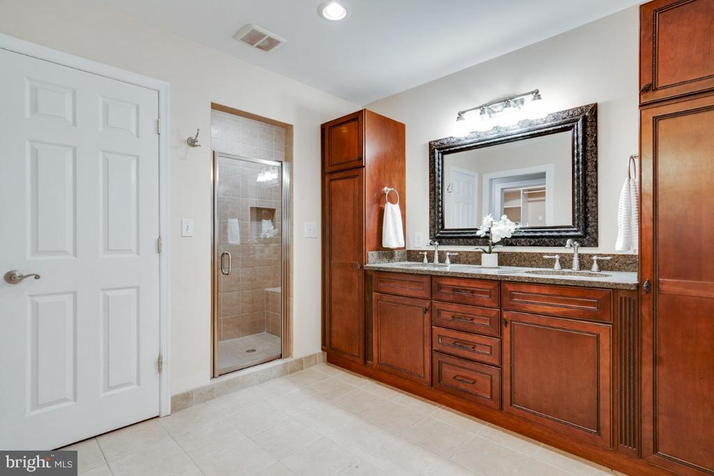 Walk-in luxury shower - 14422 WILLIAM CARR LN, CENTREVILLE
