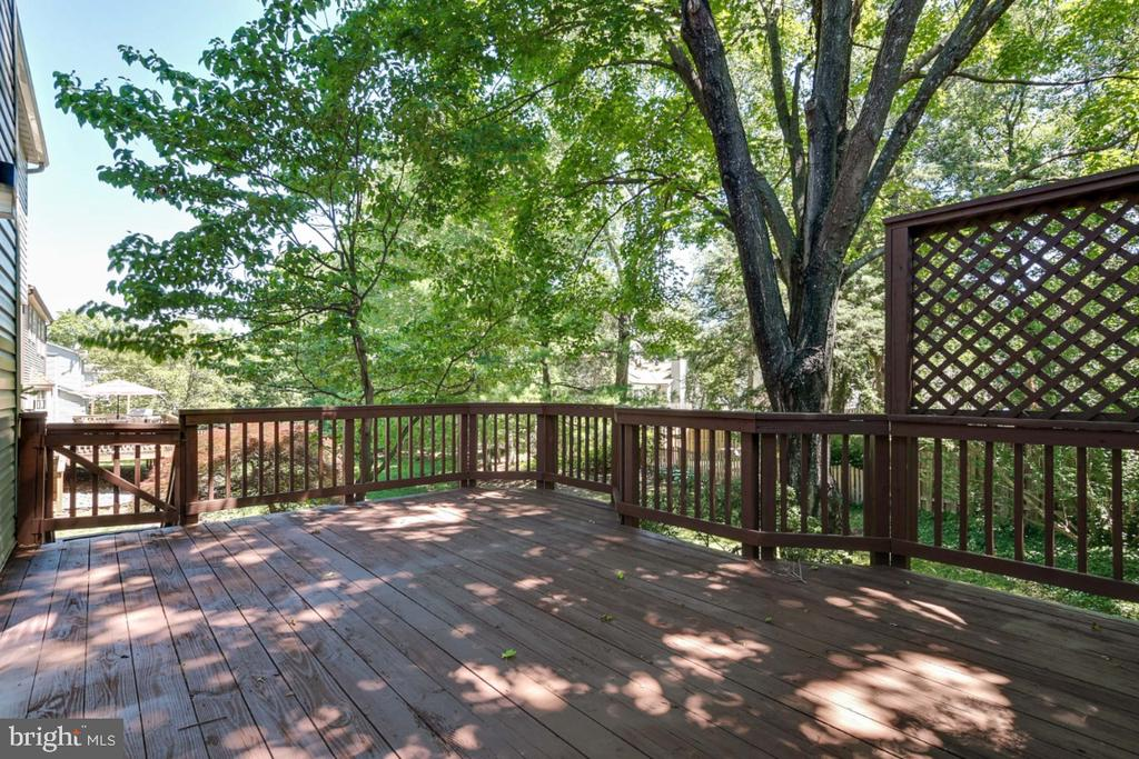 Very private deck off family room - 14422 WILLIAM CARR LN, CENTREVILLE