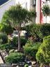 Manicured Grounds - 11000 COUNTRY CLUB RD, NEW MARKET