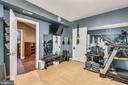 Lower Level Home Gym - 11329 STONEHOUSE PL, POTOMAC FALLS