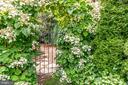 Beautiful Hydrangea Arbor - 4501 35TH RD N, ARLINGTON