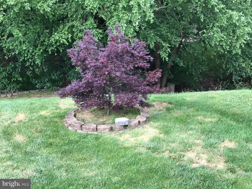 Nice landscaping - 22 BALLANTRAE CT, STAFFORD
