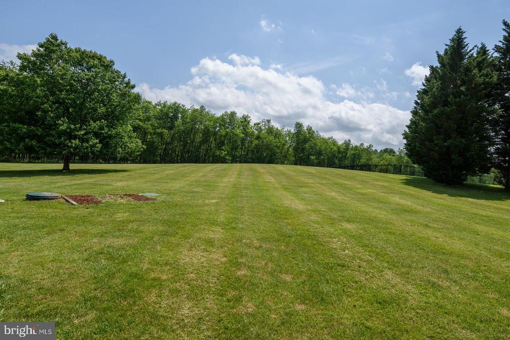 Lush, green lawn - 13701 MOUNT PROSPECT DR, ROCKVILLE