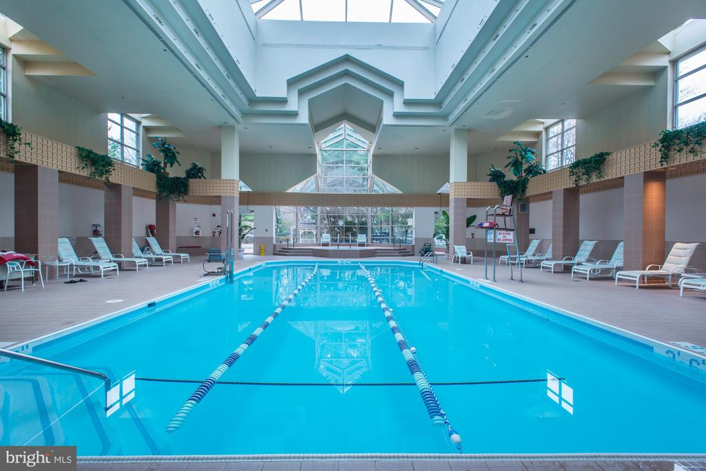 Indoor Pool - 5610 WISCONSIN AVE #304, CHEVY CHASE