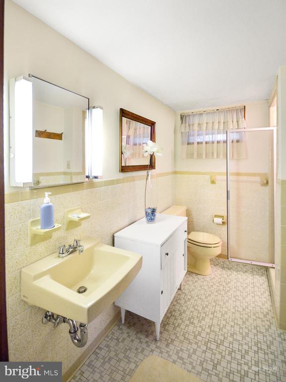 Lower Level full bath - 404 CULLER AVE, FREDERICK